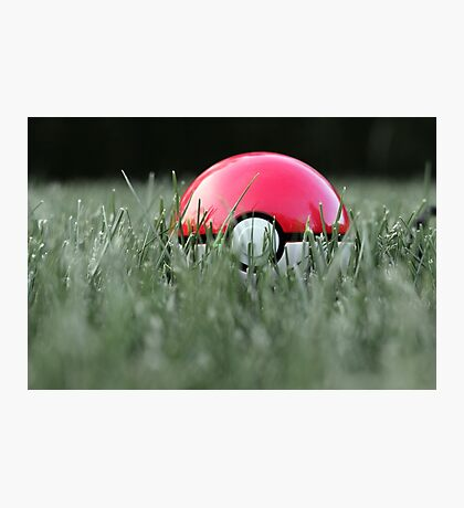 Pokeball in Grass Photographic Print