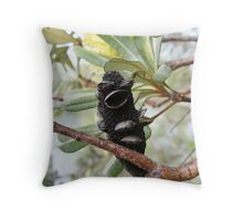 Black bird singing  Throw Pillow