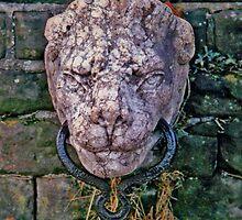 Lion Head Harness Ring by John Brotheridge