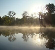Foggy Reflection by Wendella Reeves
