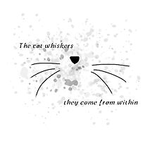 Dan & Phil |The cat whiskers- they come from within Photographic Print