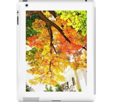 from under the shade tree in autumn iPad Case/Skin