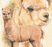 Alpaca by BarbBarcikKeith