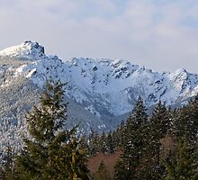 """Mount Angeles - Olympic National Park"" by Lynn Bawden"