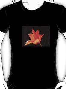 T Shirt Orange Flower  T-Shirt