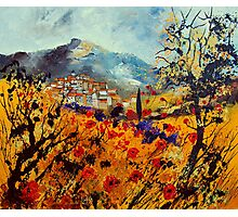 Poppies in Provence  France  Photographic Print