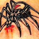 Deathshead Spider by George Yesthal