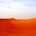 A day in the Arabian Desert by Baha Mosa