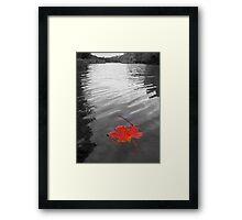 Fallen Beauty Framed Print