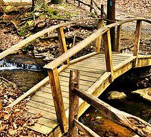 Adams Fall Bridge by Lyndsay81