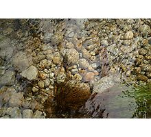 Creek bed pebbles Photographic Print