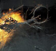 Mythologie - Pangu by Balbize