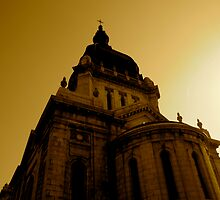 At the Top. Basilica of Saint Mary by Trenton Purdy