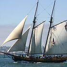 Spirit of Dana Point by fsmitchellphoto