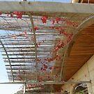 Decorative shade by oiseau