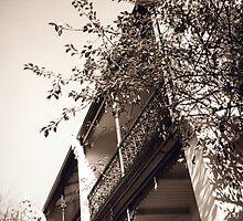 Haus ix by Sylvia Karall