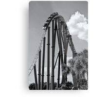 Thrill Ride Metal Print