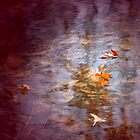 Beneath The Water Leaves by Lam Tran