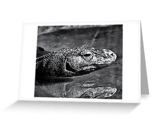 Komodo Greeting Card