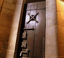 Dungeon Door by Deanna Roberts Think in Pictures