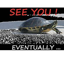Turtle on the move! Photographic Print