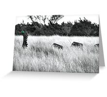 Texas Land Nessie Greeting Card