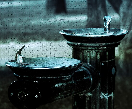 Fountain of Youth by Trish Mistric