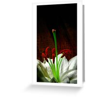 Oriental Lily Greeting Card