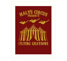 The Flying Graysons Art Print