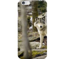 Timber Wolf Between the Trees iPhone Case/Skin