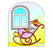 Cat In Rocking Chair Photographic Print