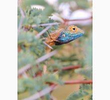 Blue Headed Lizard - Peeking Out Unisex T-Shirt