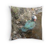 Muscovy Hen, Preening Throw Pillow