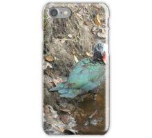 Muscovy Hen, Preening iPhone Case/Skin