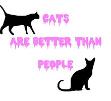 cats are better than people by kyotokatze