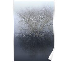 reflections in fog Poster