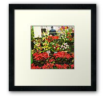 Flowers at the Preston Market; ready for Christmas .. Melbourne Framed Print