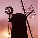 Horsey Mill by MayWebb