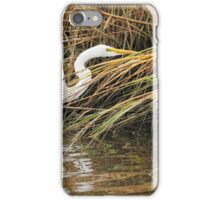 Great Egret iPhone Case/Skin