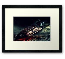 Spear of Destiny Framed Print