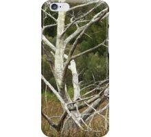 Stark II iPhone Case/Skin