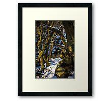 Padley Gorge Winter Framed Print
