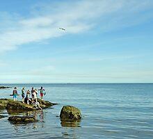 Rock Pool Fishing, Runswick Bay by Rod Johnson
