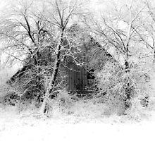 White Christmas by BarnArtandMore
