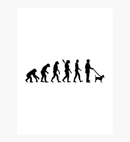 Evolution Jack Russel Photographic Print