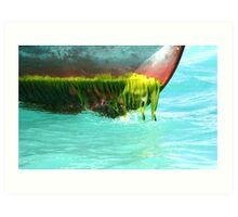 Algal bloom Art Print