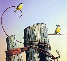 Yellow Finches by John  Murray