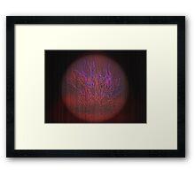 bonsai? Framed Print