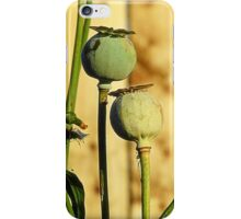 Poppy Heads iPhone Case/Skin