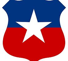 Roundel of the Chilean Air Force  by abbeyz71